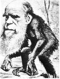 土总统令:高中课程删进化论  疑其为假说