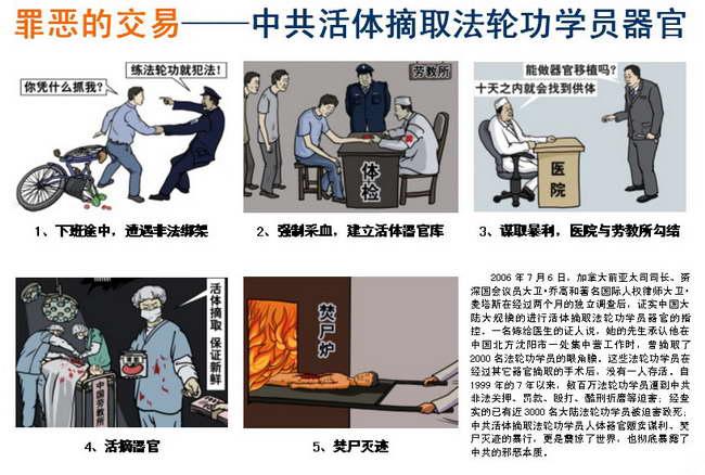 中共活摘法轮功学员器官专题报告