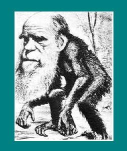 电子书:《进化论--人类最大的科学误区》