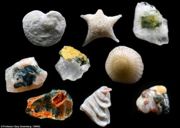 奇观 沙子250倍放大镜下是大千世界