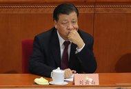 巴拿马文件再撼中共高层:刘云山张高丽家人上榜
