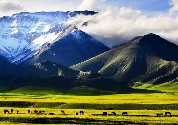 西域和新疆的由来  古代西域三十六国