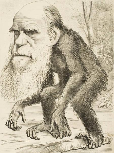 炮制荒谬进化论祸害人间  达尔文怪病缠身