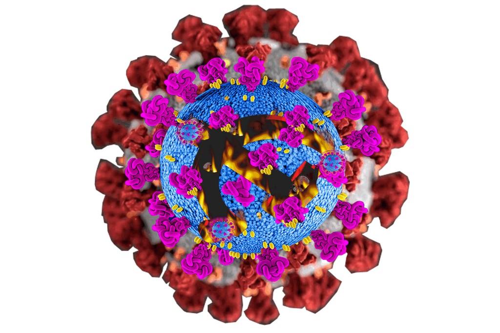 忐忑不安的疫苗接种现状