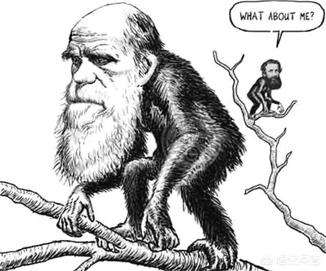 一千多名科学家签名反对达尔文进化论