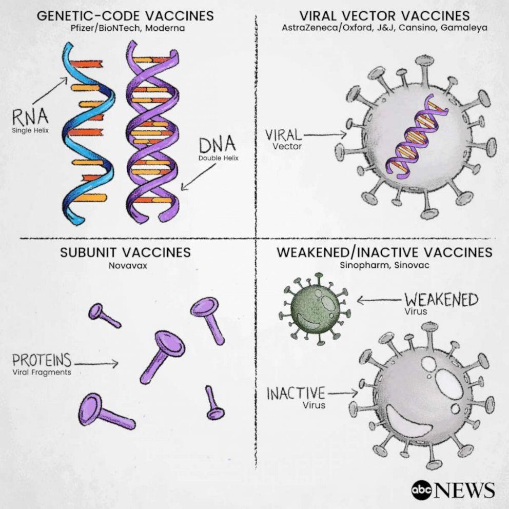 四类新冠病毒疫苗的特点、优缺点及副作用